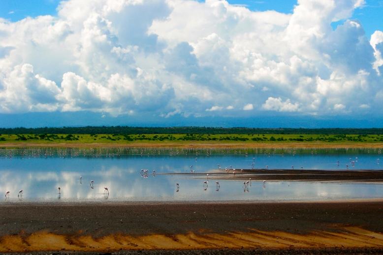 Lake Magadi [2009: Oktofani]