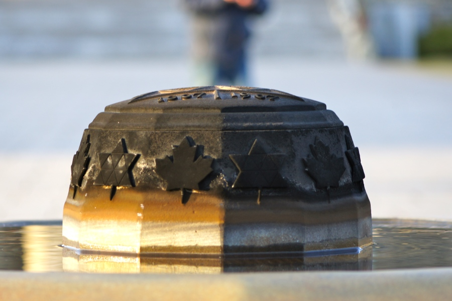 Eternal Flame for The Unknown Soldier [2011: Oktofani]