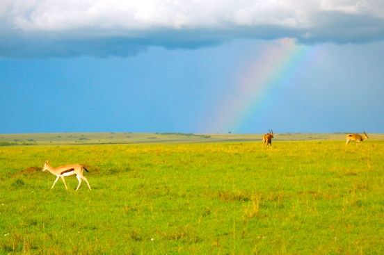 Rainbow  at Masai Mara [2009: Oktofani]