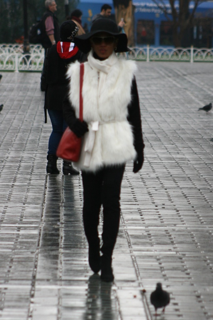 it is not real fur but faux fur [2015: E R]